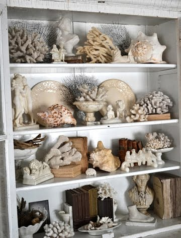 sea-life-collection-cabinet
