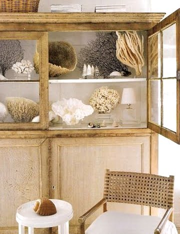 sea-coral-collection