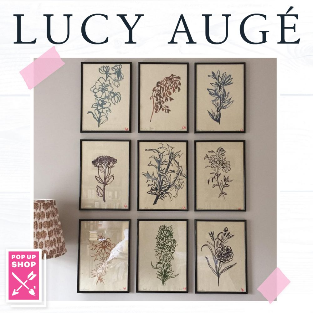 lucy auge floral studies